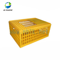 Plastic Collapsible Chicken Transport Crate/Turnover Cage for Poultry-750*555*270