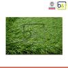 2014 high quality cheap for home golf plastic fake grass carpet mat