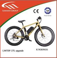 Electrical Bikes Light LMTDF-27L