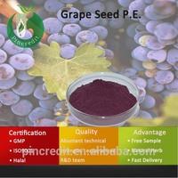Grape Seed Extract/Grape Seed Extract Powder/Grape Seed P.E.