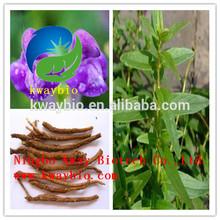 Natural Radix Scutellariae Extract / Baicalin 85%-98%HPLC