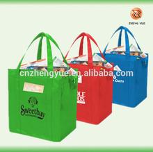 high quality customized promotional cooler bag/plastic cooler bag/ice cooler bag