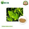 China manufacturer supply ginkgo biloba extract, ginkgo biloba,ginkgo biloba capsule for medicine
