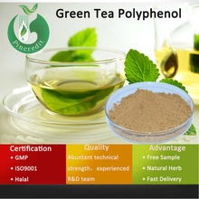 Green Tea Extract/Green tea Catechins/Green Tea Polyphenol