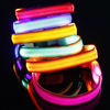 LED Dog Collar Manufacturer