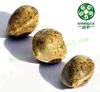 Industrial Hemp Seeds Wholesale