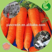 2014 New produced herbal extract beta carotene carrot extract
