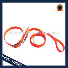 Retractable pet leash matching pure orange Collar