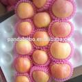 2014 nueva cosecha fresca red delicious china precio promedio de frutas de manzana variedades de frutas para la venta