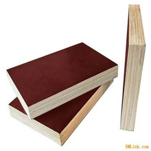 Poplar, eucalyprus, birch, larch, pine core Film faced Plywood,Construction Plywood,concrete shuttering plywood