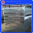 Poultry Farm Quail H type Layer Cage