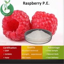 Raspberry Extract Powder/Raspberry Extract 4 Raspberry Ketone/Raspberry P.E.