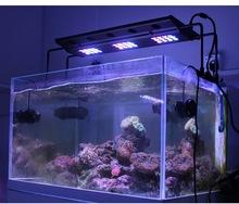 alba e tramonto sps corallo coralli 60w cree led acquario luce