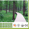 Wooden Grain Wood and Plastic Garden WPC Board/Flooring Laminate