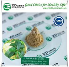 Eucommia Ulmoides P.E. Eucommia Leaf Extract ( Chlorogenic acid)
