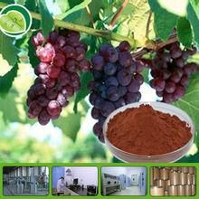 GMP grape seed extract softgel capsule