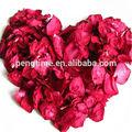 乾燥したバラの花びら/赤い花のバラの花びら