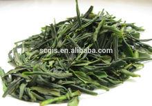 China natural organic no pollution fresh and mellow flavor slim green tea