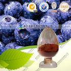 High quality Acai Berry Extract powder 100 mesh