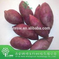 Food Color Plant Extract Purple Sweet Potato Color Powder,Sweet Potato Color extract