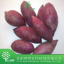 Food Color Plant Extract Purple Sweet Potato Color Powder,Sweet Potato Color extract