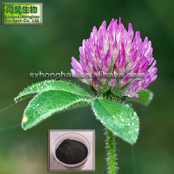 Herb Medicine 8%-20% isoflavone red clover extract powder