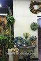 Mini/artificial enorme pinheiro de natal árvore/anel/flor para casa/hotel/escritório( nova natal combinação de este- 023)