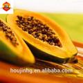 natural extrato de enzima papaína pó e suplemento nutricional