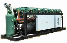 Germany Air cooled bitzer compressor refrigeration unit for cold room