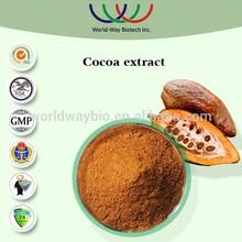 HACCP FDA KOSHER China hunan changsha supplier natural cocoa polyphenol,theobromine extract powder cocoa seeds
