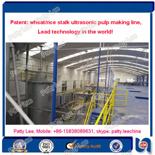 Lead technology. Wheat stalk and rice stalk pulping machine, no any pollution