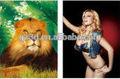 عالية الجودة 3d 2 تأثير الوجه مع صور الكرتون الحيوانات الجنس