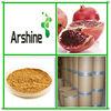 Anti-oxidant Polyphenol Punica Granatum Seed Extract