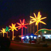All kinds of palm trees in colorful light decoration