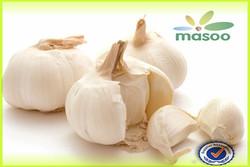 fresh high quality natural garlic for sale / pickled garlic / garlic extract liquid