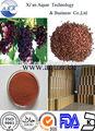 De calidad superior 95% opc de semilla de uva extracto para la asistencia sanitaria y nutricionalsuplemento