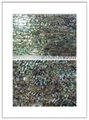 aaaグレードの母真珠ベニヤ、 生のアワビの貝殻シート自然な色
