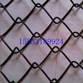 Precio barato negro cadena de enlace valla( estándar de la exportación y maufacturer)