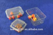 Food Grade plastic fruit Punnet
