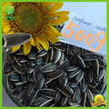chinês preto novo e original boa qualidade comestíveis sunflowering 5009 sementes