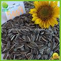 chino 2014 nuevo barato no gmo con sabor a comestible de las semillas de girasol