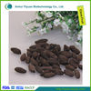 Bulk Raw Clove Fruit for sale