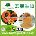fuente de la fábrica co2 supercrítico de extracción y extracto de papaya en polvo de buena precio