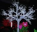 llevó la magia de la boda árbol luces y decoración de eventos importantes