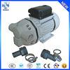 RDAP RONDA portable chemical pump mini adblue pump 220-volt water pump