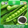 Organic Fertilizer in China