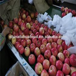 Huaniu Apple 2014 crop