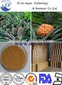 100% natural puro extrato de abacaxi pó enzima bromelina 1000gdu/g