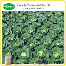 Wild Cabbage Extract Powder Anthocyanins 10%-35% ,Vitamin A