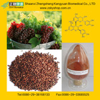 Free sample grape seed extract powder